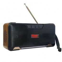 Радиоприемник RSDO RD-02UBT