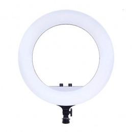 """Кольцевая лампа 45см RL-18""""..."""