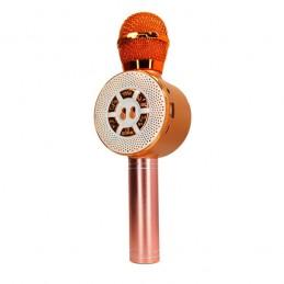 Микрофон-караоке WS-669