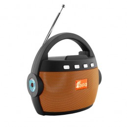 Радиоприемник EPE FP-99